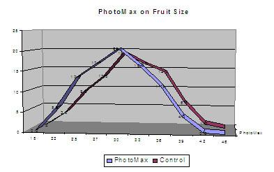 /images/0000/0037/Fruit_Size_Kiwifruit_06.jpg